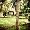 Foto Tambang Ayam Beach,