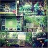 Foto Hutan Adat Wonosadi, Ngawen