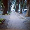 Foto Taman Suropati, Jakarta Pusat
