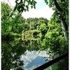 Foto ForMar Nature Preserve & Arboretum, Burton