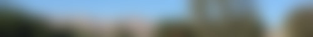 Large background photo of Estacio