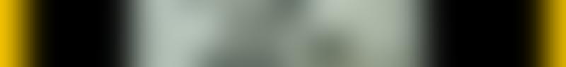 Large background photo of Kwik Kar Mockingbird