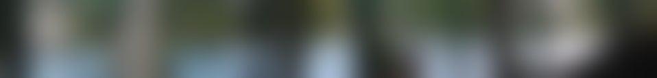 Large background photo of Novecento