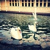 Фото Атаманская усадьба