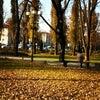 Фото ГУ МВД по Краснодарскому краю