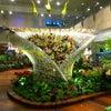 Lapangan Terbang Changi Singapura, Photo added:  Sunday, July 21, 2013 11:53 PM