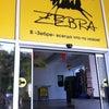 Фото Zebra