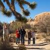 Photo of Desert Adventures