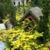 Habersham Gardens