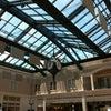 Savannah/Hilton Head International Airport, Photo added:  Saturday, August 4, 2012 7:02 PM