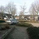 inge-van-neerven-12376839