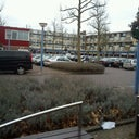 dees-van-pelt-12649265