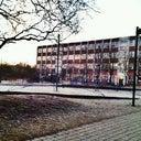 ricarda-schuldt-18104795