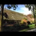 wiebe-van-den-bergh-28285842