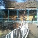 zhnya-bakst-28820061