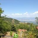 silvia-kotrotsos-4047771