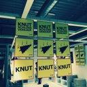 knut-4715304