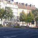 nicole-tauscher-54188488