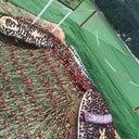 yusuf-rotblut-55117782