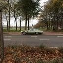 toon-van-den-bos-6639251