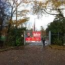 joost-schut-6914948
