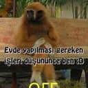 burcu-sarembetil-83152531
