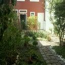 daniele-costa-hoster-4256209