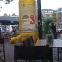 inge-van-schenk-brill-11885094