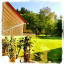 mira-middeldorf-29016860