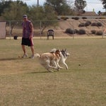 Photo taken at Echo Mountain Dog Park by Hope D. on 2/16/2014