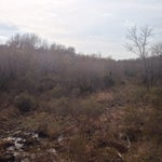 Photo taken at East Texas Arboretum and Botanical by Steven N. on 3/21/2014