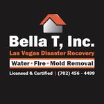 Bella Mold Removal