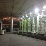 Go to the urban garden outside of terminal G and upstairs. Quiet area with comfy seating (and a yoga studio!). Great lighting since there's a garden up there. There's at least one outlet too.