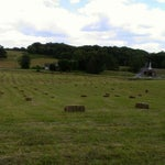 "Photo taken at Mavis Manor | Farm Stay by Sir Justyn ""Baron"" on 6/8/2012"