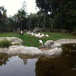 Photo taken at Oakland Zoo by James R. on 12/30/2011