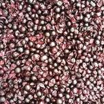 Photo taken at Stinson Vineyards by Stinson V. on 10/21/2011