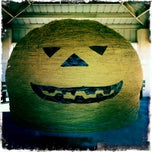 Photo taken at World's Largest Ball Of Twine   (made by a community) by (KSMA) Kapatiran Suntukan Martial Arts on 11/3/2011
