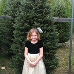 Photo taken at The Old Barn Christmas Tree Farm by Christina W. on 11/27/2011
