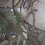 Photo taken at The Breakfast Nook (: by Autumn on 10/7/2012