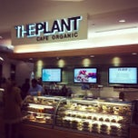 Photo taken at The Plant Cafe Organic by Arielle K. on 2/11/2013