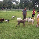 Photo taken at Dog Run @ Bishan Park by Edvarcl H. on 12/22/2013