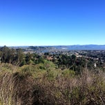 Photo taken at City of Larkspur by melissa h. on 12/25/2014