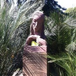 Photo taken at Succulent Garden by Paul W. on 9/18/2014