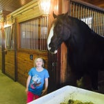 Photo taken at Express Clydesdales Ranch by Tim R. on 2/7/2015