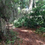 Photo taken at Spanish Pond at the Timucuan Preserve by Ray M. on 5/26/2014