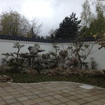 Photo taken at Seattle Chinese Garden by Richard S. on 4/22/2013