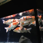 Photo taken at MCC Hall by Kate R. on 10/13/2012