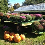 Photo taken at Queens County Farm Museum by Michelle W. on 10/13/2012
