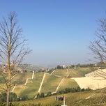 Photo taken at Boscareto Resort & Spa Serralunga d'Alba by Maria S. on 10/29/2014