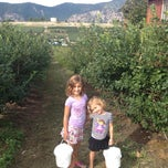 Photo taken at Blueberry Hills Farm by Aaron M. on 8/29/2013